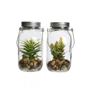 Solar jar plant