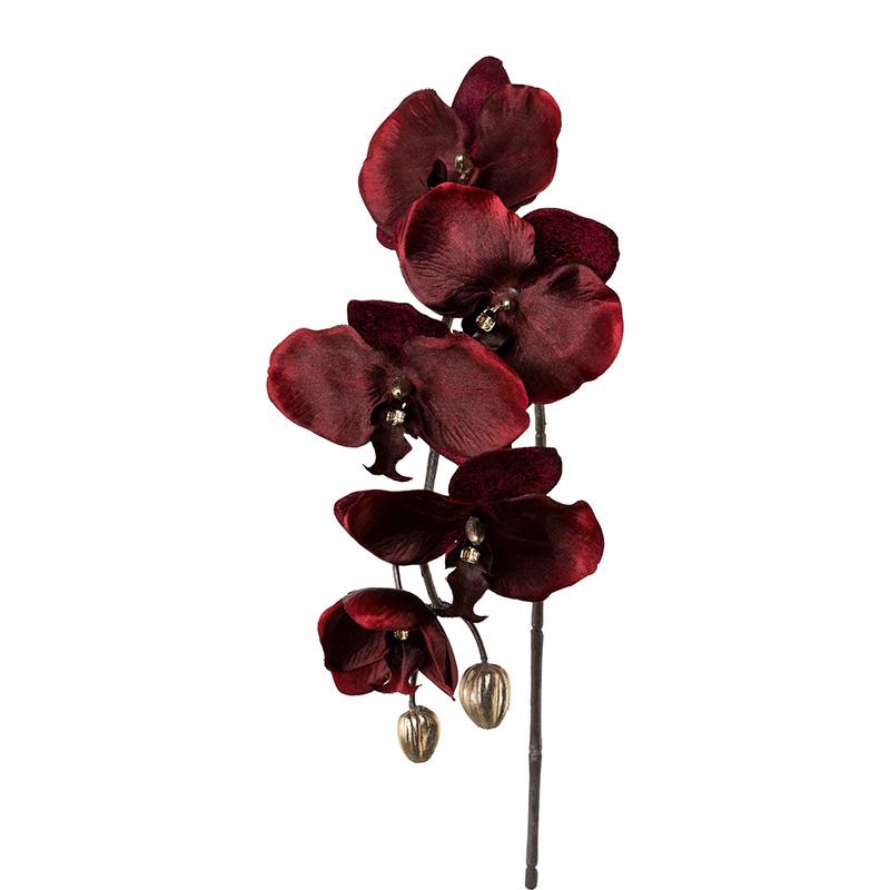 Artificial Flower Phalenopis Velvet Bordeaux Hometrends